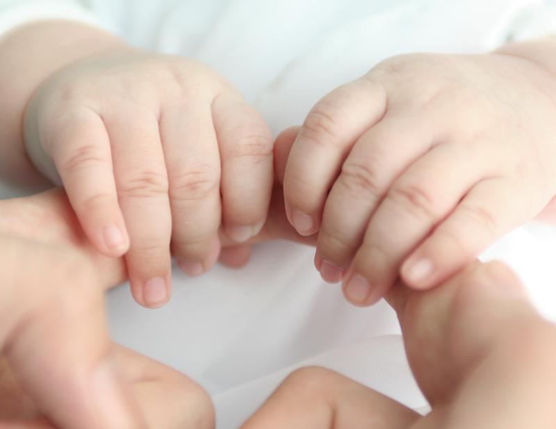 2 mains de bébé dans la créche écologique Montessori de Pantin