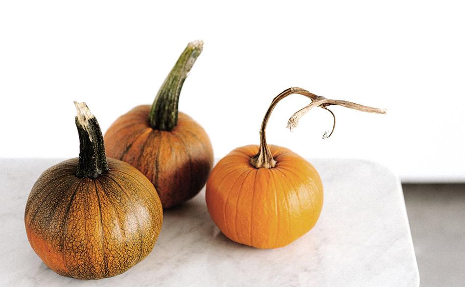 des légumes du potager de la crèche écologique Montessori de Pantin